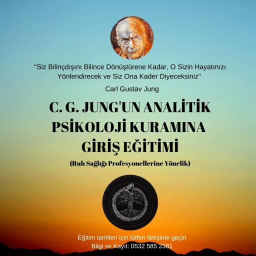 C. G. JUNG'UN ANALİTİK PSİKOLOJİ KURAMINA GİRİŞ EĞİTİMİ